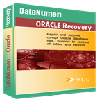 Giveaway : DataNumen Oracle Recovery